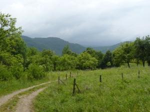 Selishte village, Central Bolkan Range, Gabrovo Municipality